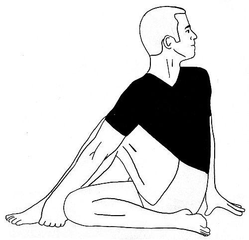 Ardha Matsyendrasana Yogasana